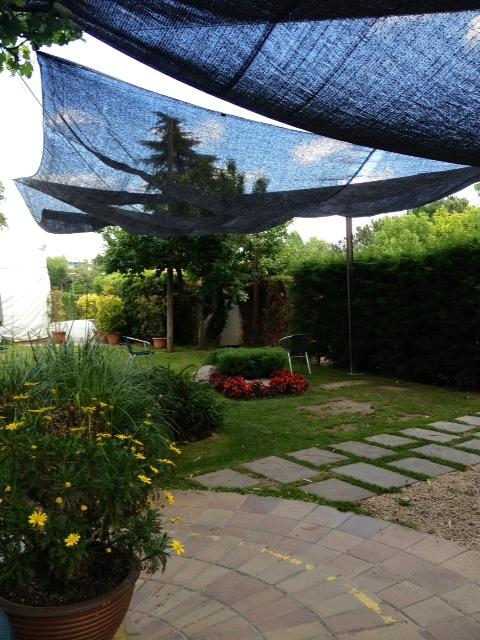 Jardín. Garden. Garten.