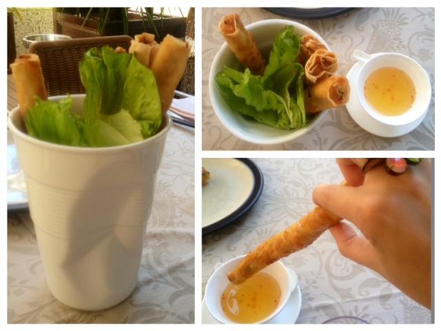 Rollitos de gambas con mango y albahaca. Shrimp rolls with mango and basil. Garnelen Rollen mit Mango und Basilikum.